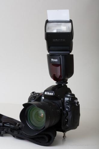 Bobby_2014_08_02_0099175_Canon EOS 5D_100.0 mm_(S197-F11.0-ISO100-FY)